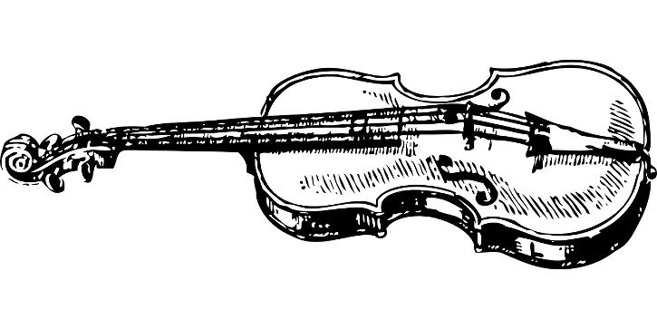 Vienna Residence Orchestra - violin